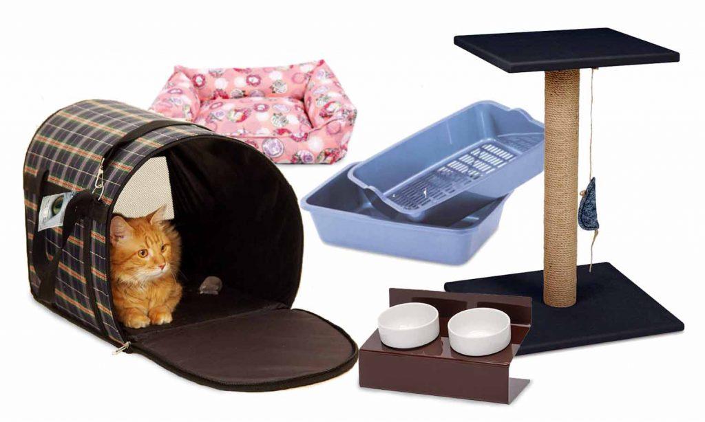 какие вещи нужны кошкам